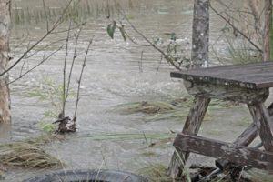 Pond goes under water